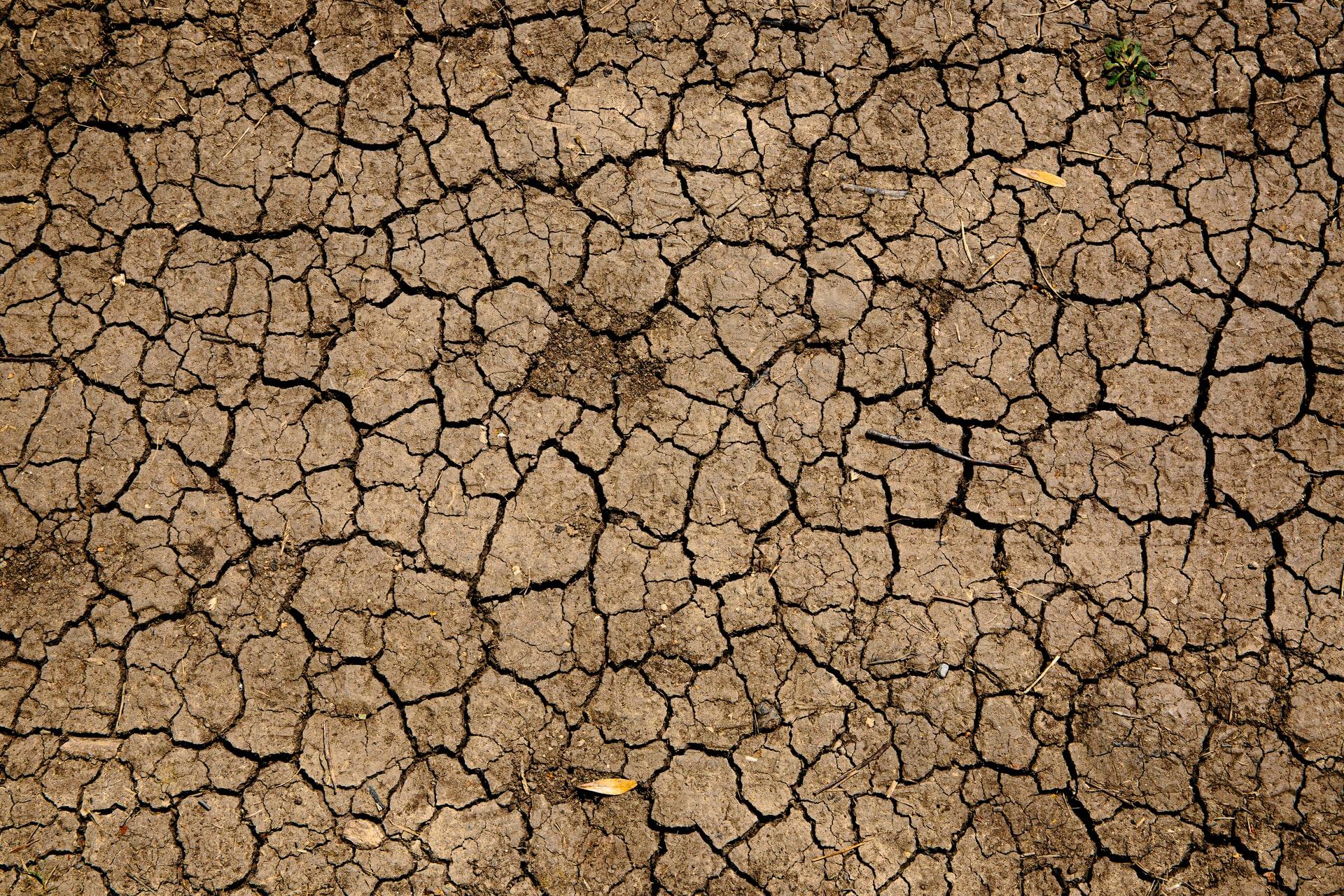 consecuencias efecto invernadero